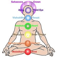 indian head massage bristol